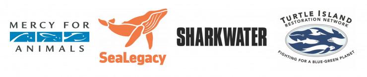 MFA_TIRN_SeaLegacy_SHARKWATER