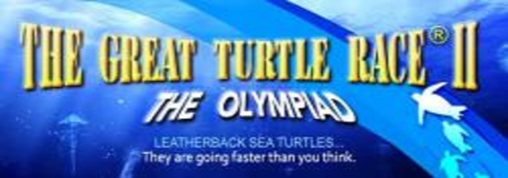 Eleven Leatherback Turtles to Compete in the Great Turtle Race Across the Pacific Ocean