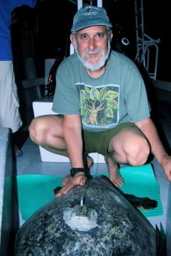 Notes from the Field: Sea Turtle and Shark Tagging Expedition