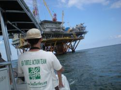Offshore and Underwater Searching for Gulf Sea Turtles