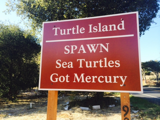 SPAWN Receives Land Parcel Inside Stream Conservation Area in San Geronimo Valley
