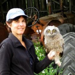 madeleine-owl-web