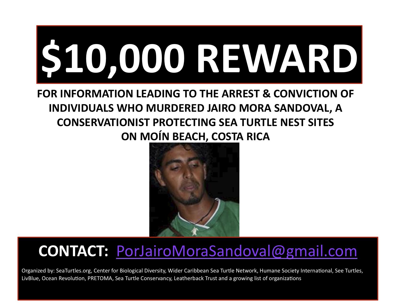 $10,000 Reward to Find Killers of Sea Turtle Activist in Costa Rica