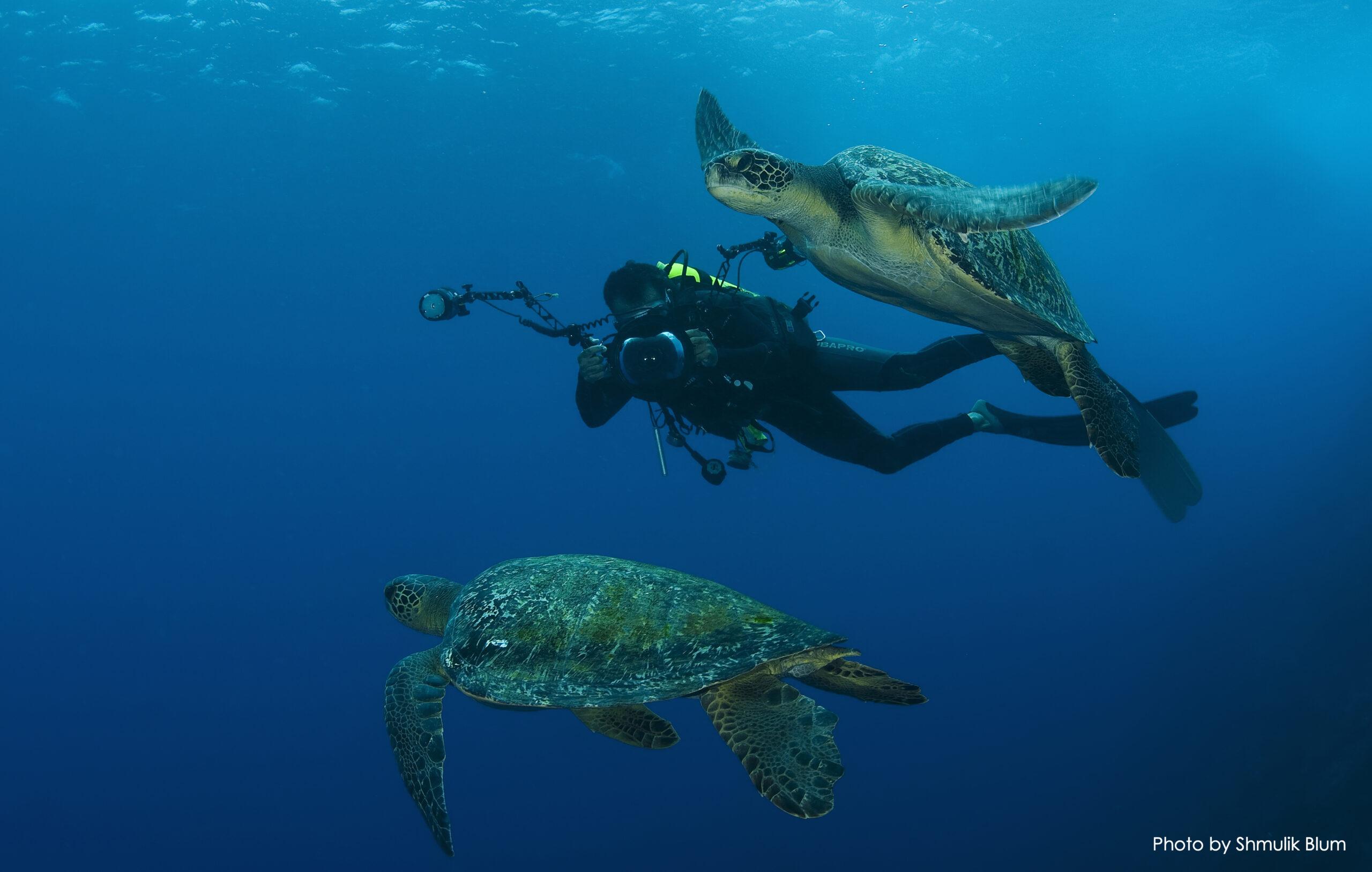 Cocos Island Expedition Gallery