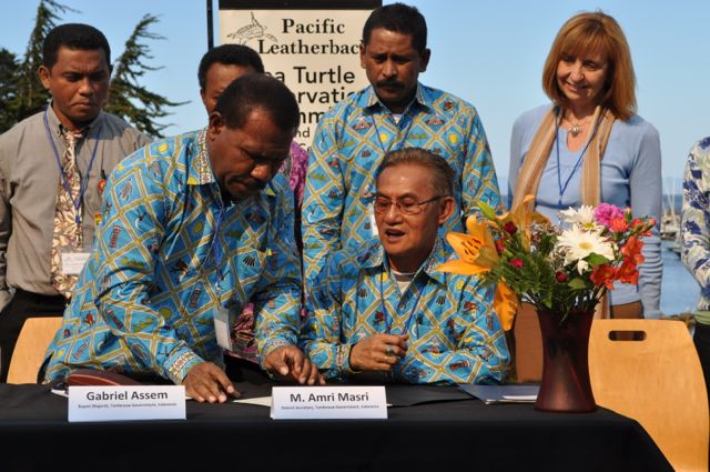 California and Indonesia Launch Partnership to Save Endangered Sea Turtles