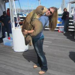 Teal showing some turtle love at SailFest 2012! Photo: Kristyn Jensen.