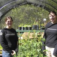 volunteeratourplant