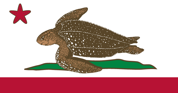 Free, Bi-lingual Snapshot Contest Educates Public About California's Pacific Leatherback Sea Turtles