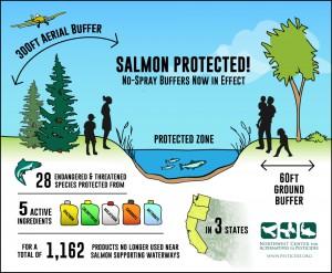 SalmonBuffersFinal