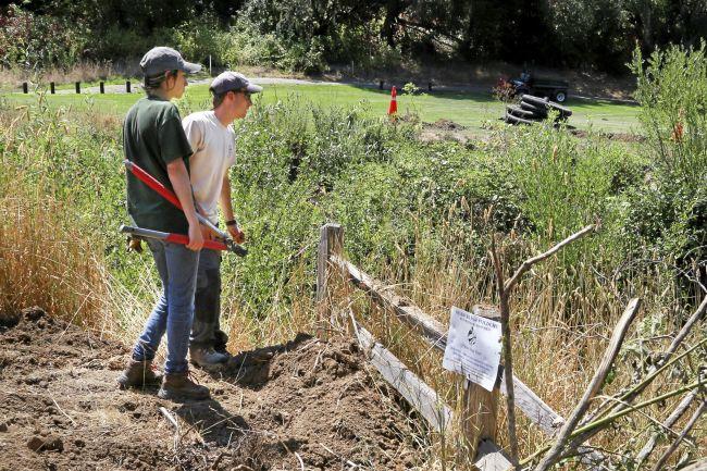 Habitat Restoration at San Geronimo Golf Course to Aid Salmon
