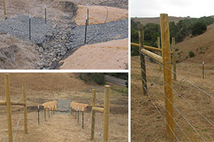 Cattle Fence Nears Completion