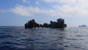Dirty Rock, Cocos Island, Costa Rica.