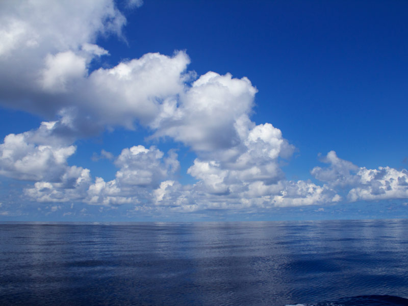 A Few Hundred Miles Closer to Cocos Island (Day 2)