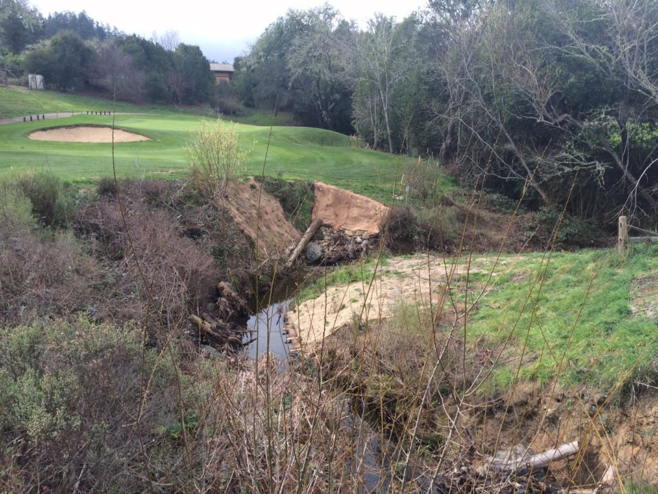 Three Restoration Grants Totaling $665,237 Go to Salmon Projects in Marin