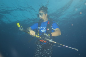 Dr. Hearn diving with research equipment to track whale sharks.