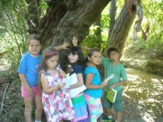 Earth Educator Spotlight: Teacher Debra DiBenedetto of Dixie Elementary School