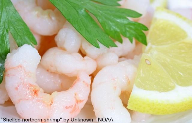 Shelled_northern_shrimp
