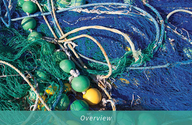 Driftnet-Overview-Cover