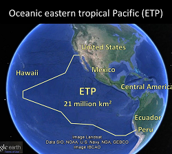 ETP_map_google 300
