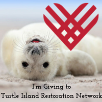im-giving-to-turtle-island-restoration-network
