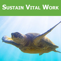 Sustain our Vital Work through a Monthly Gift