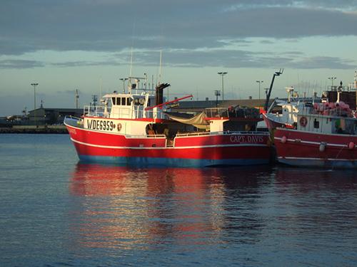 Tuna Longline Fisheries