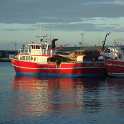 Longline fishing boat 500x373