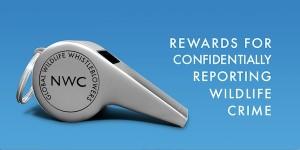 NWC_Logo2