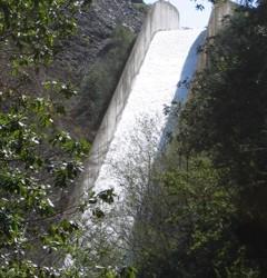 dam flow 320x240