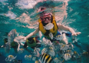 Humans need a snorkel to breathe in water. Fish need aerators in stagnate water.