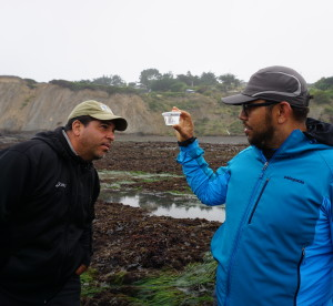 SPAWN California Naturalist