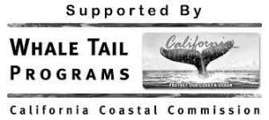whaletail_logo