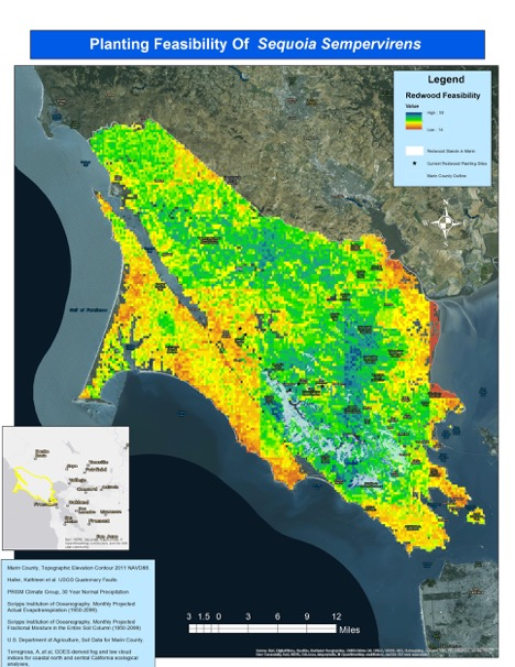 GIS Analysis of Historic Redwood Range in Marin County
