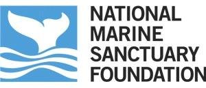 nmsf_logo