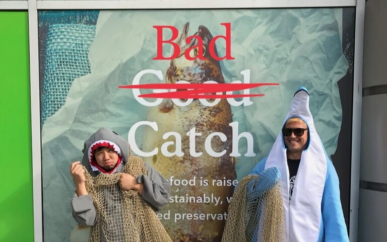 Boycott Swordfish to Save Ocean Wildlife