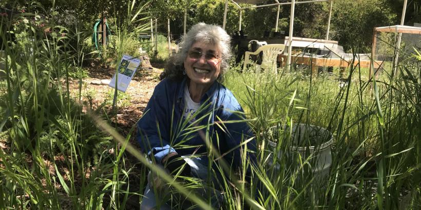 Volunteer Spotlight: Karen Dabrusin