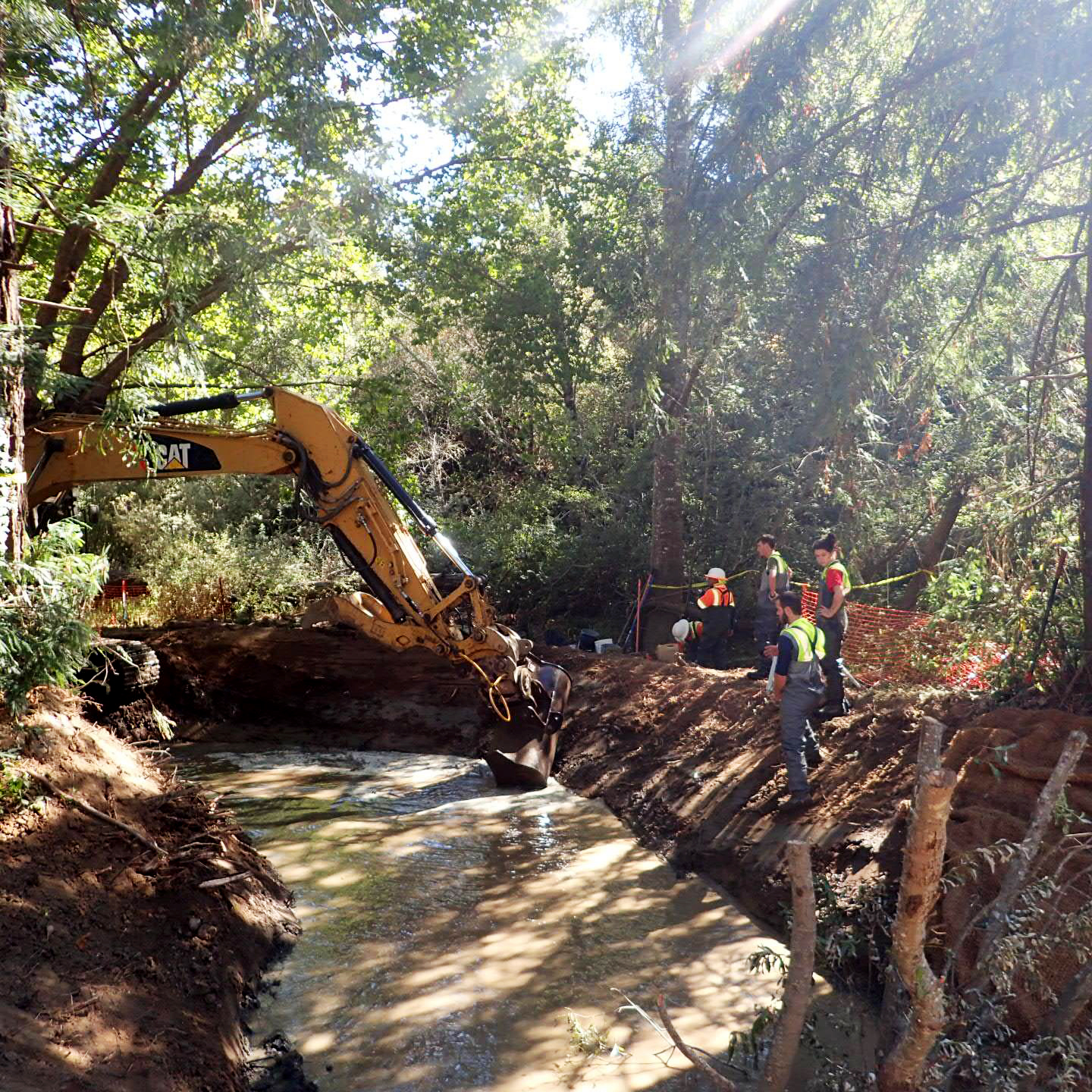 Tocaloma Restoration Project Underway