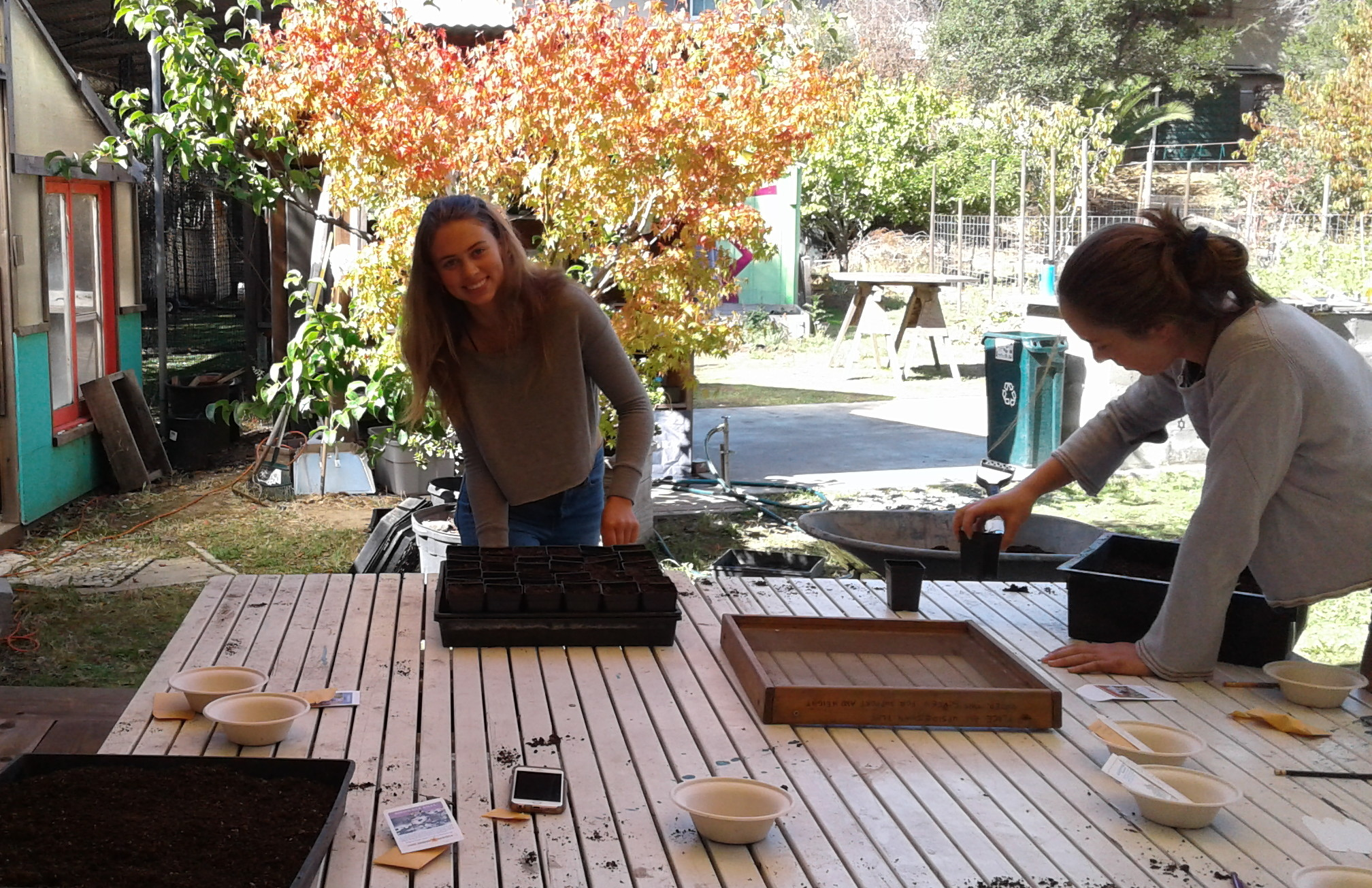 Sowing Seeds with Students