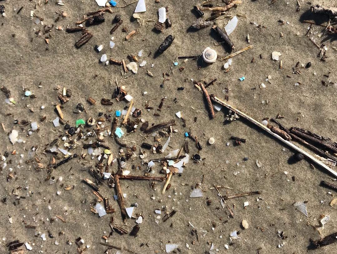 Studying the Impact of Microplastics in the Gulf