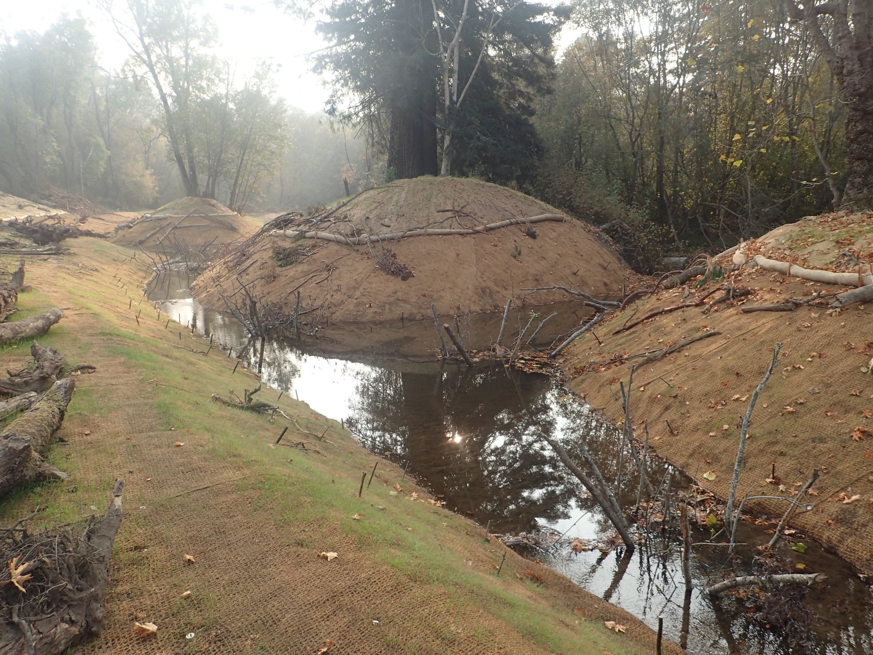 Dam Release, Rain Brings Flowing Water to Floodplain Side Channel for First Time