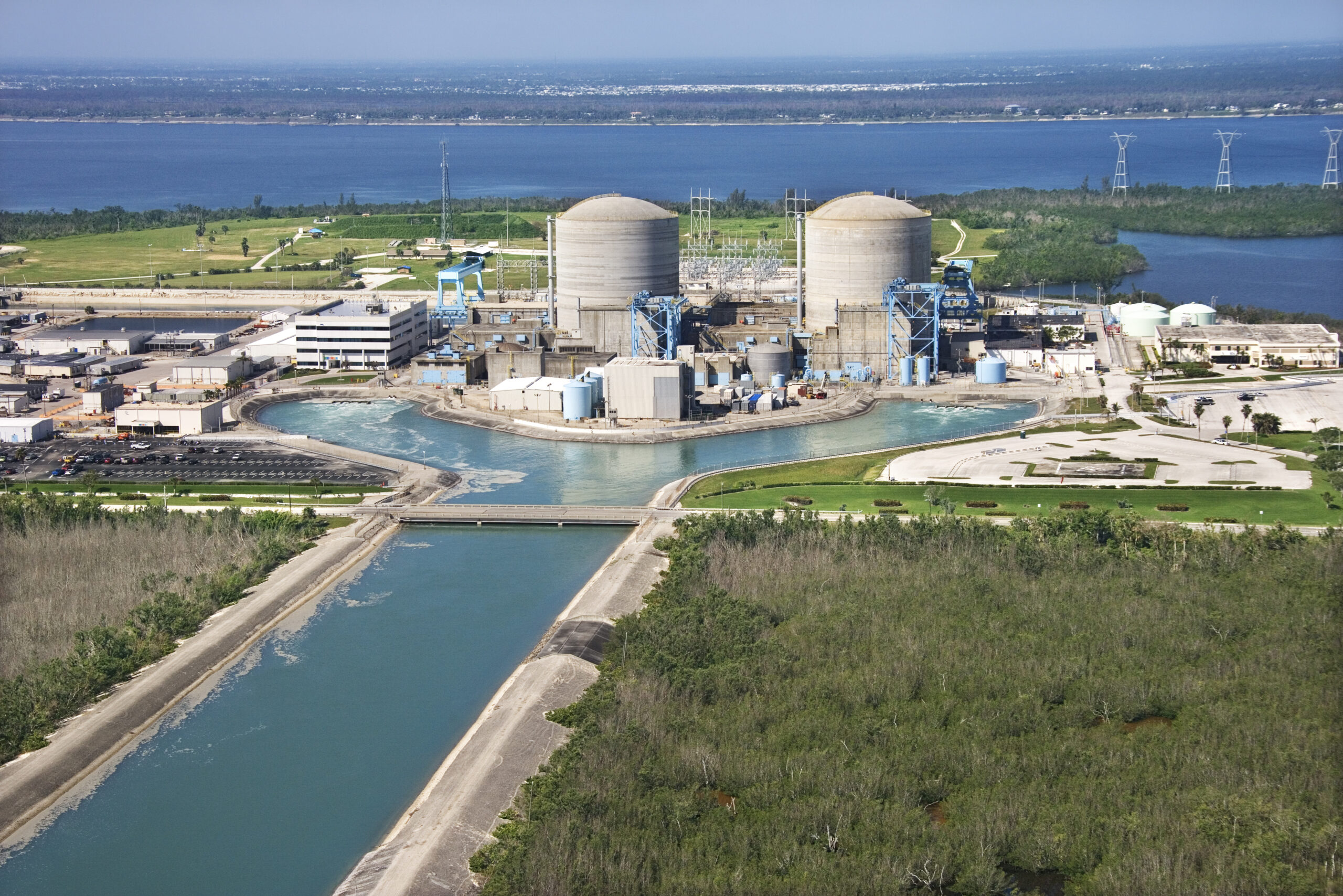 Lawsuit Launched to Force Federal Government to Protect Endangered Species from Nuclear Power Plant in Florida