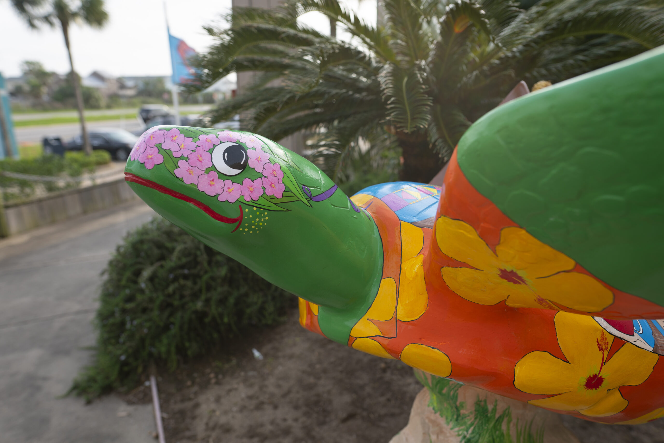 New Sea Turtle Statues Announced at Galveston Gala