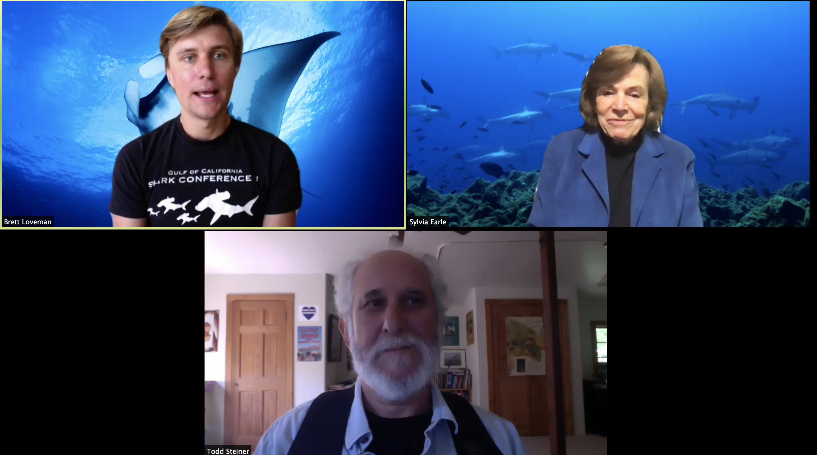 WATCH: TIRN Joins Dr. Sylvia Earle for a Conservation Roundtable on the Cocos-Galapagos Swimway Hope Spot