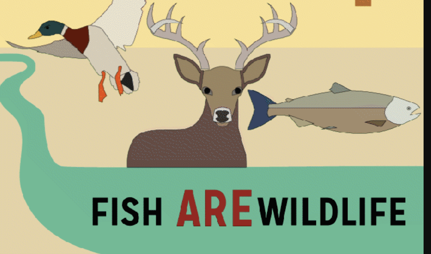 Food for Thought: Fish are Wildlife
