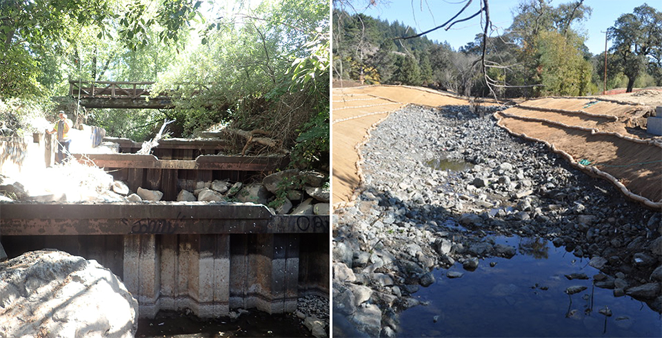 From Roy's Pools to Roy's Riffles: SPAWN Removes Central California's Highest Priority Fish Passage Barrier