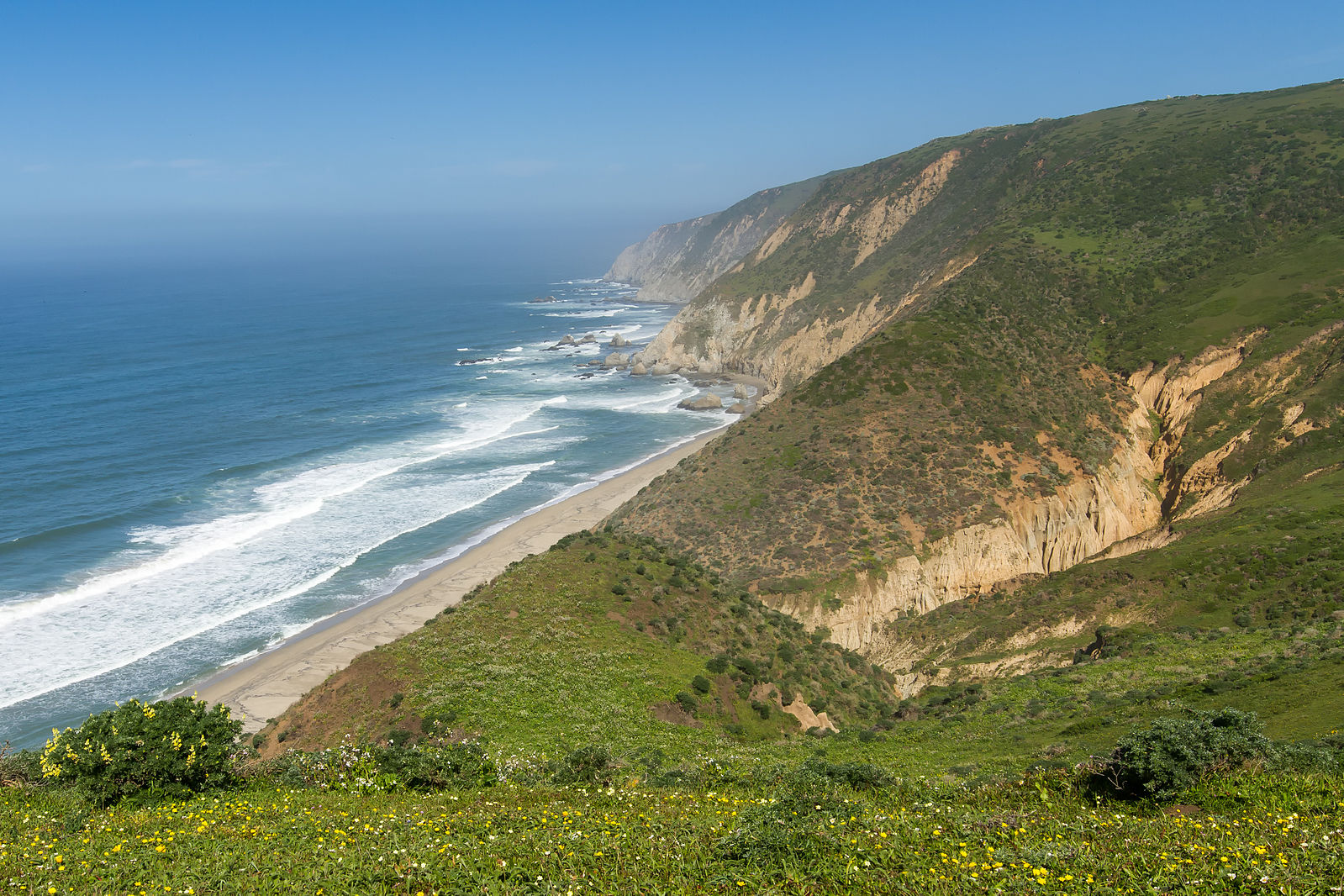 Protecting Point Reyes National Seashore Through Media Coverage and Grassroots Action