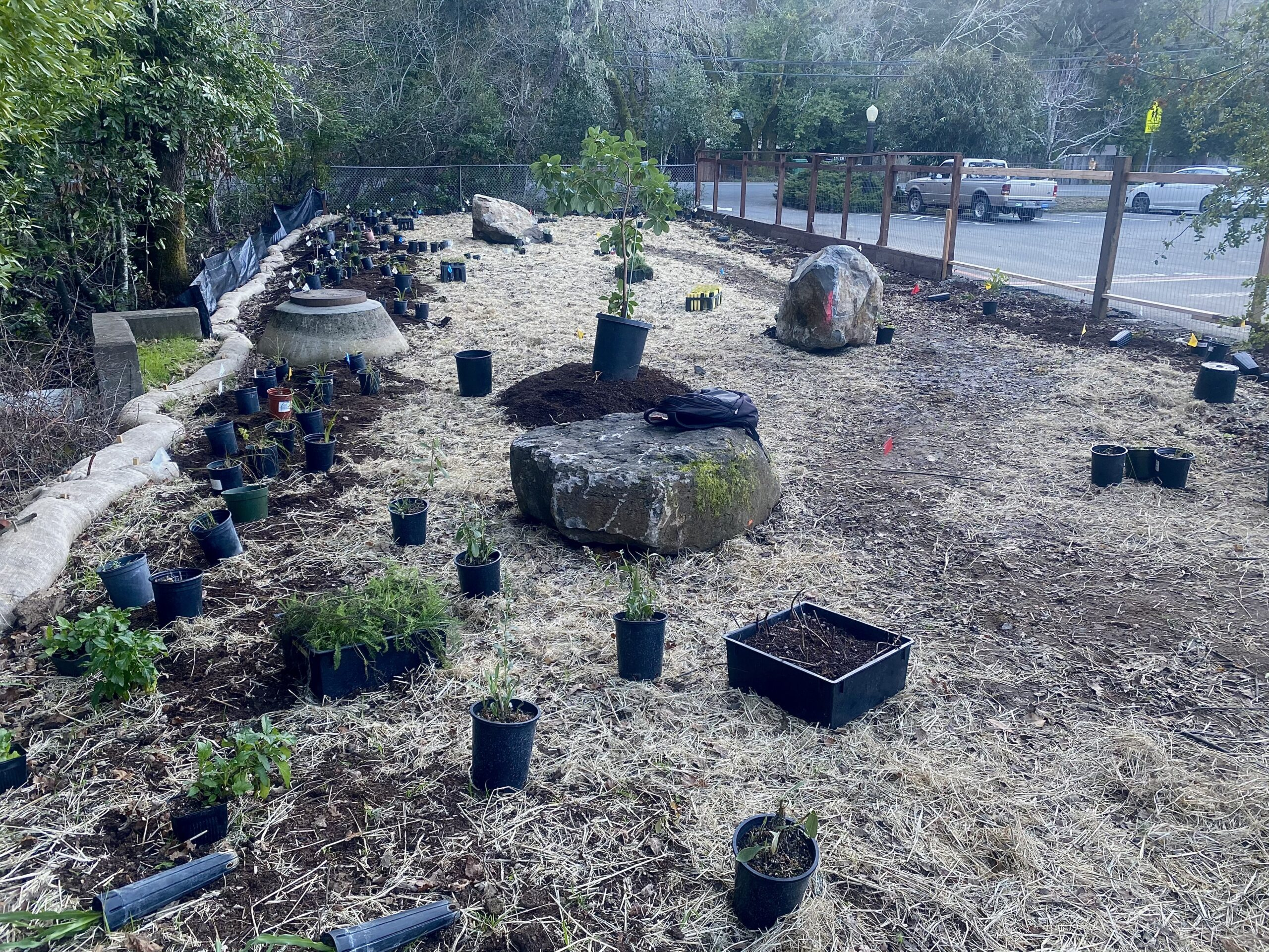 SPAWN Plants Habitat Garden at the San Geronimo Valley Community Center