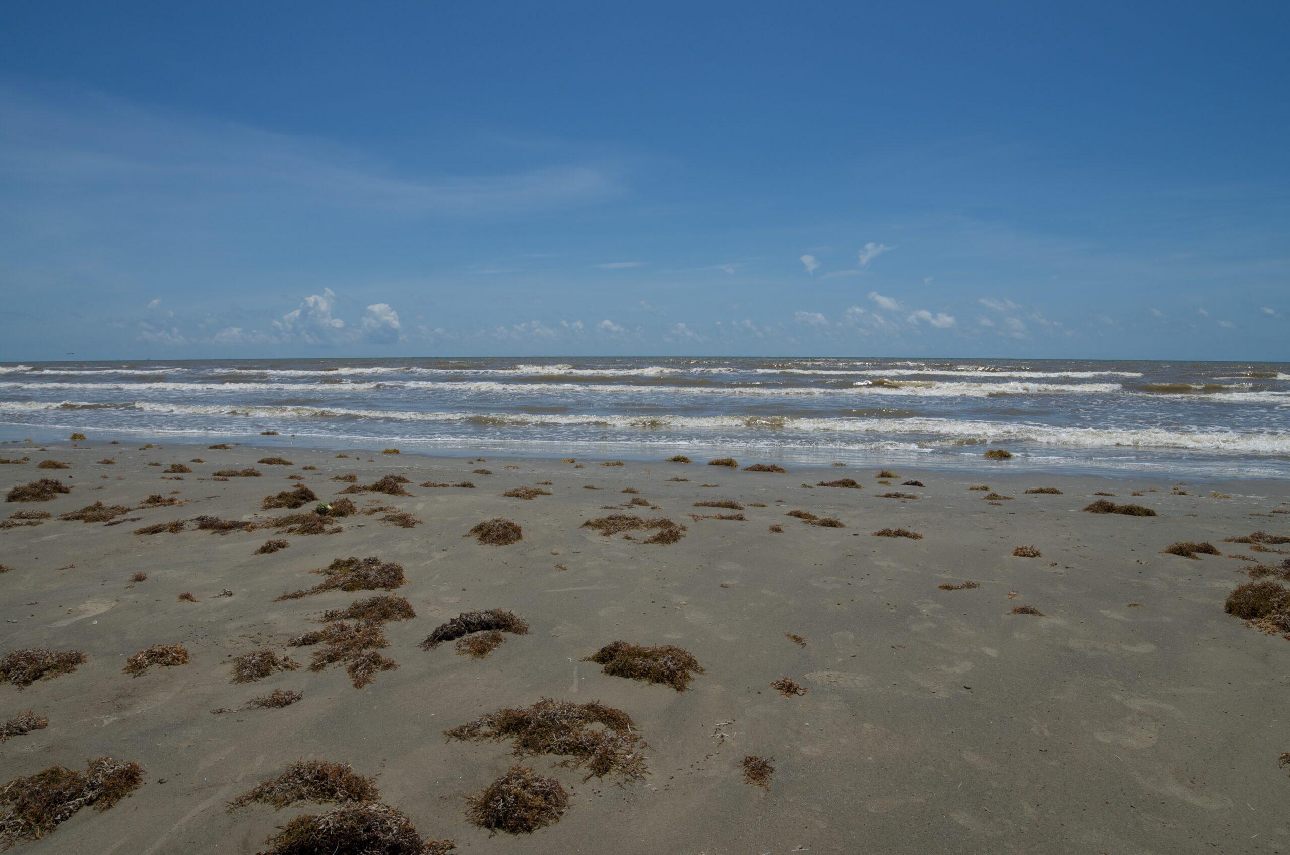 Galveston Beach Cleaning Lawsuit Dismissed