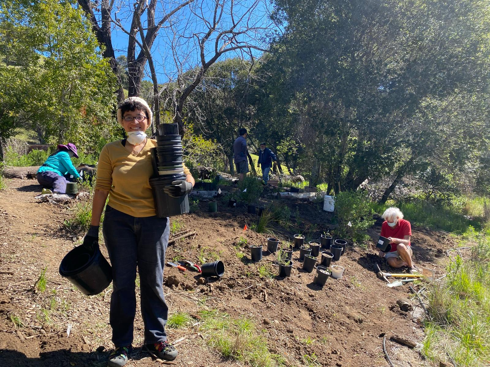 Edible Native Plant Garden Supports Sustainable Community