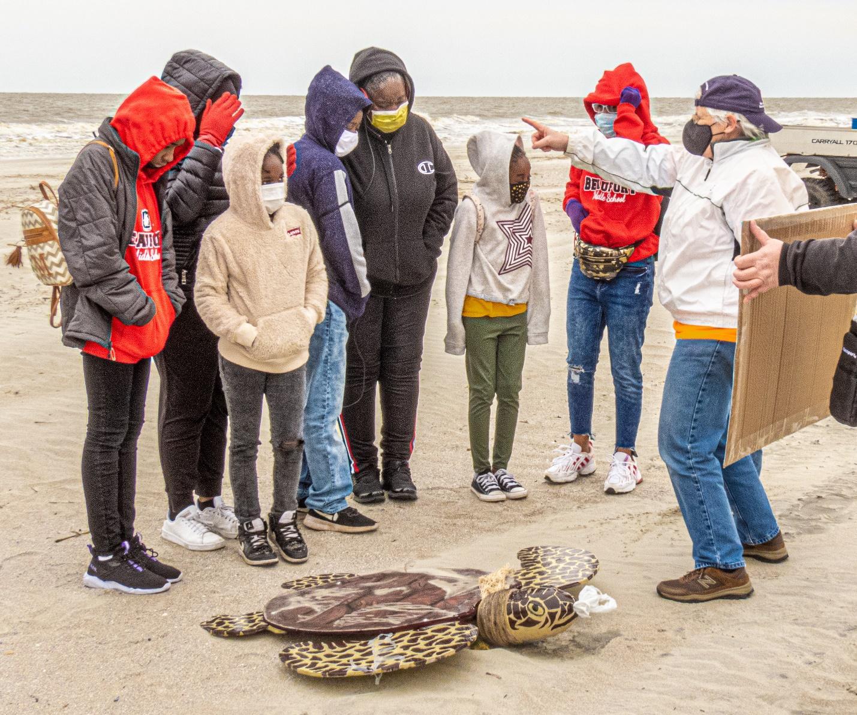 South Carolina Nonprofit Awarded Funding to Protect Nesting Sea Turtles